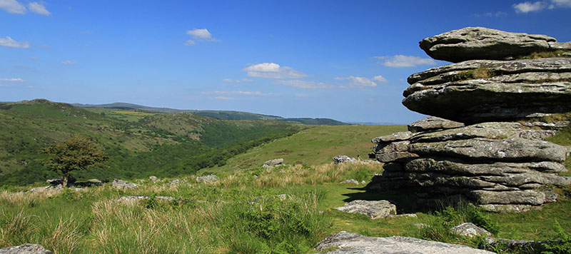 Combestone Tor view down the Dart Valley in summer
