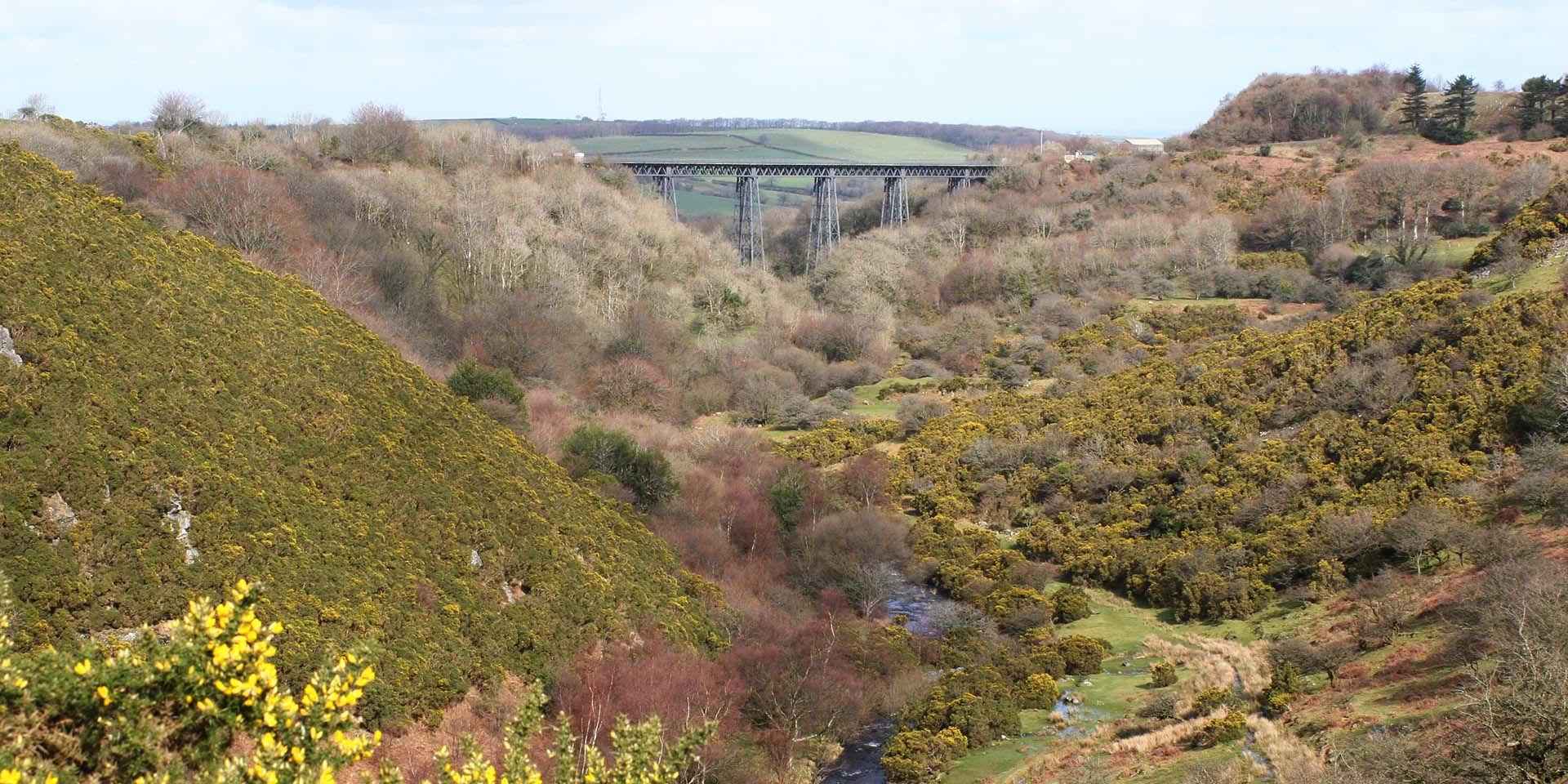 Meldon valley and viaduct