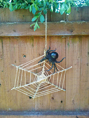Spider web made out of string and twigs with plastic spider