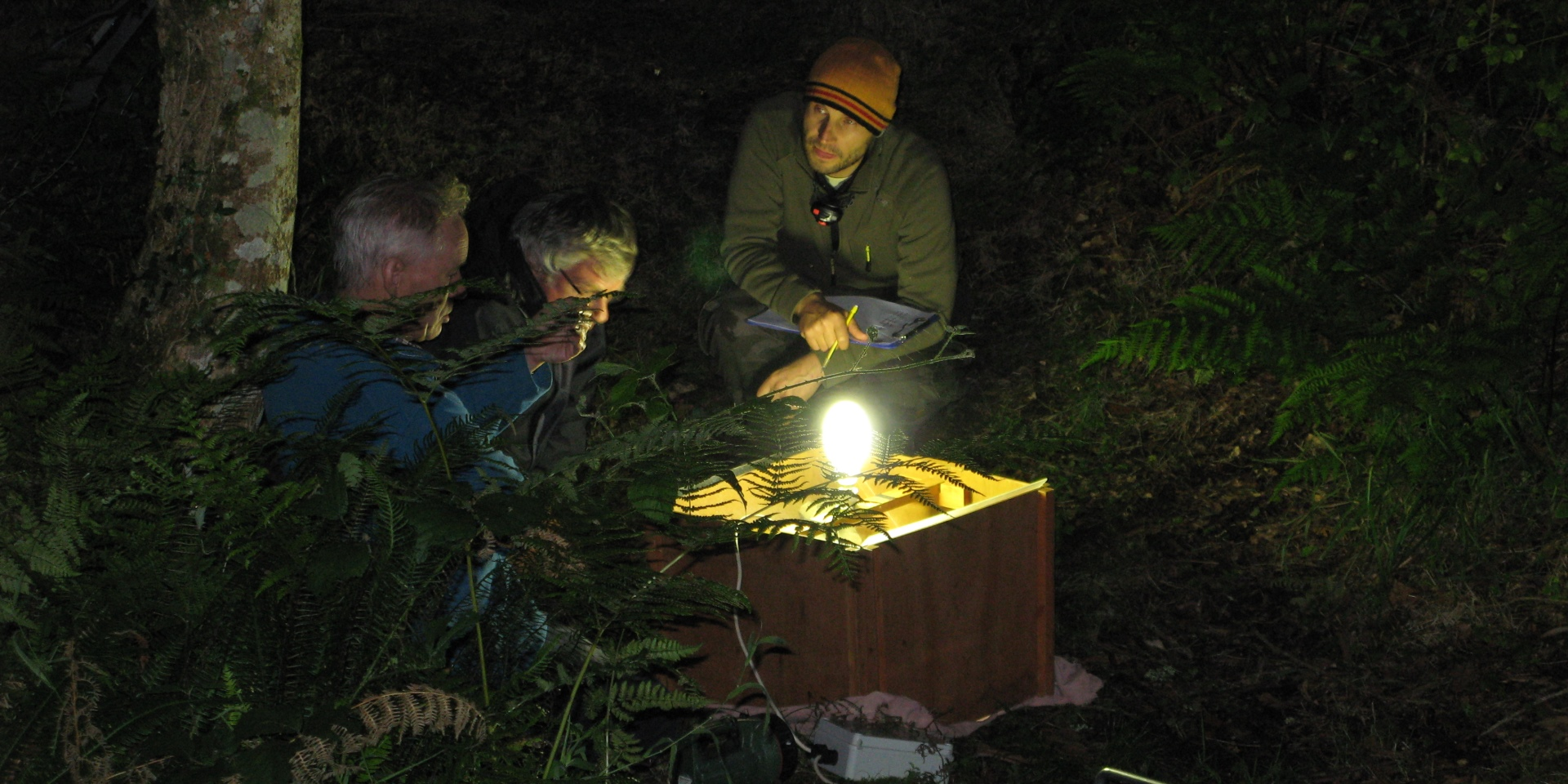 Night time research around the moth trap