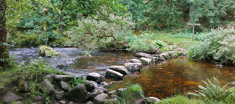 Large stepping stones over a river