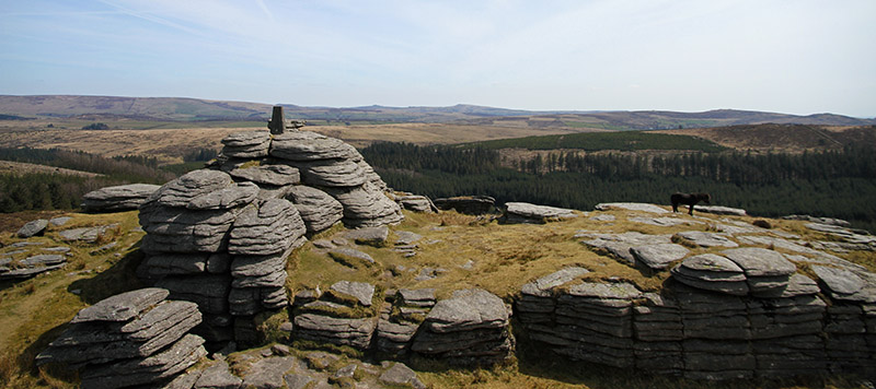 View from Bellever Tor and trig point