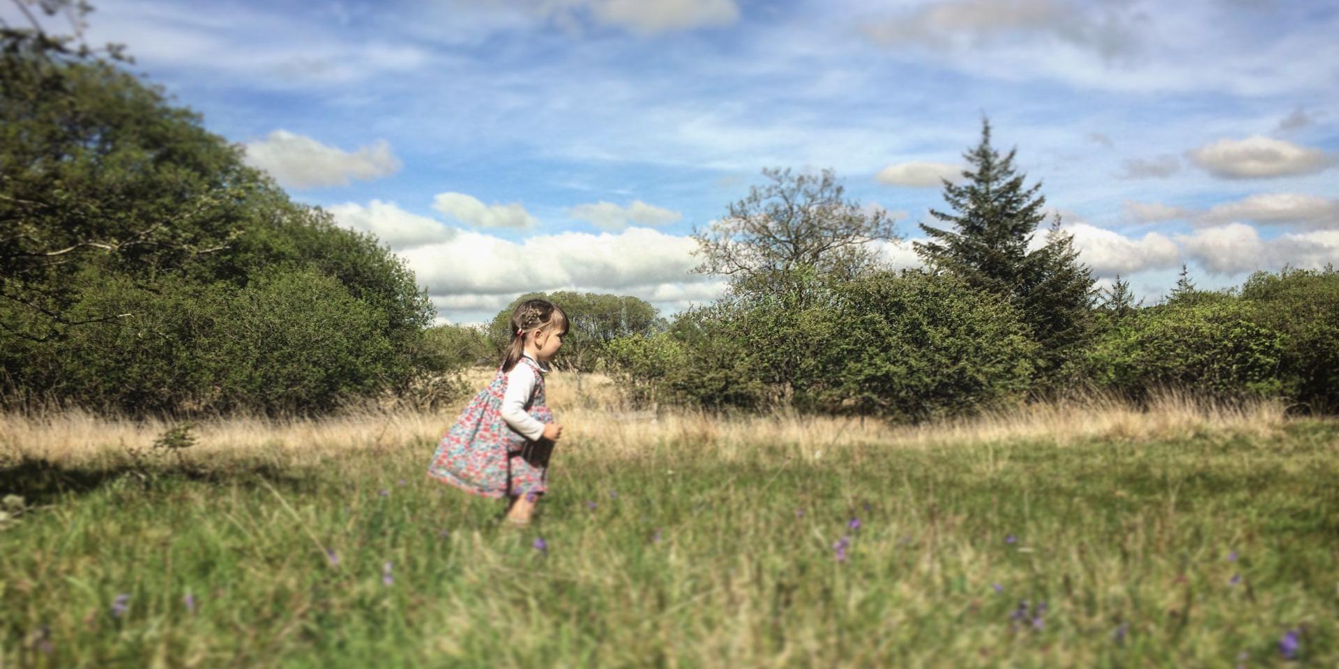 Girl wandering through meadow