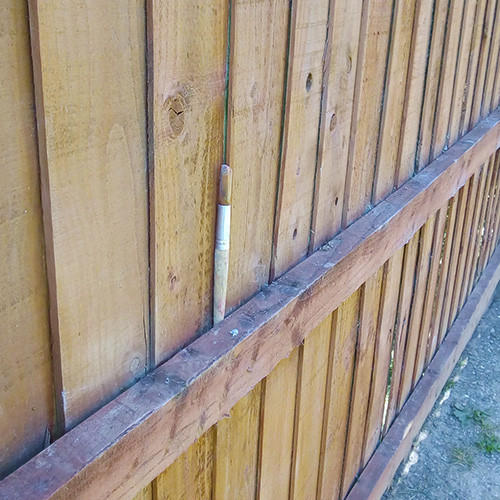 A paint brush on a garden fence