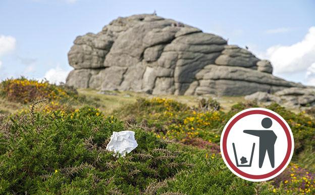 Piece of litter on gorse at Haytor rocks