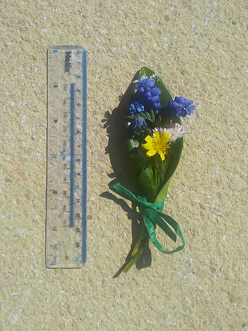 Tiny posy of flowers next to a 15cm ruler