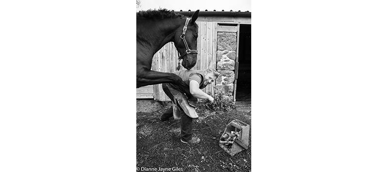 Farrier holding horse's hoof