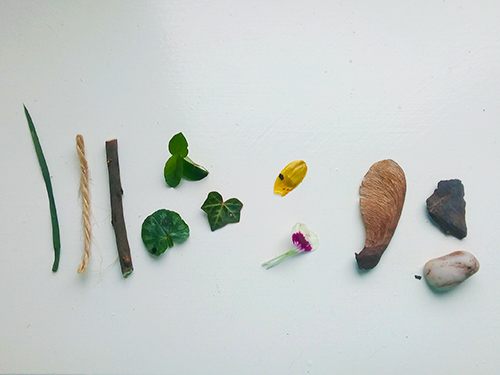 A blade of grass, string, twig, leaves, petals, a seed and some pebbles laid out