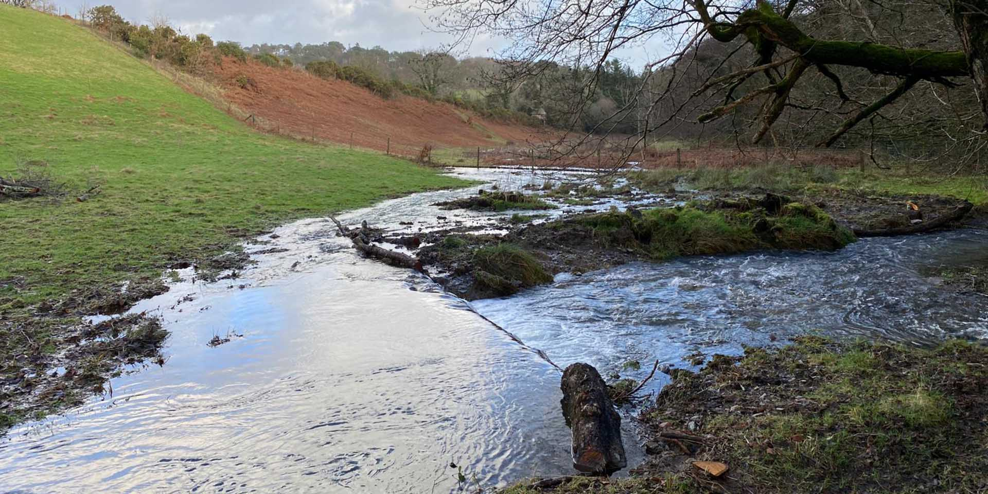 River water flowing out into floodplain