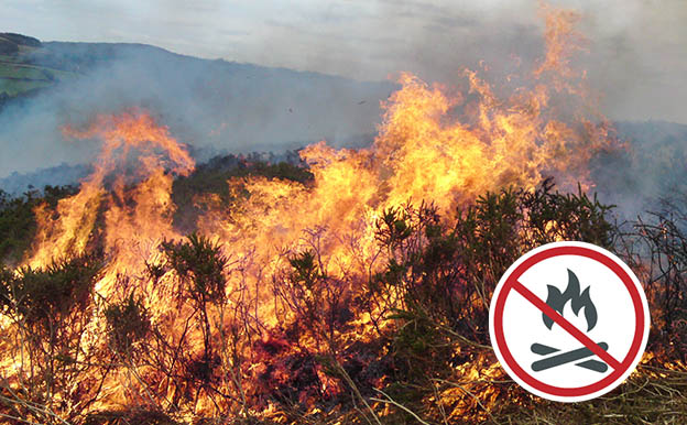 Gorse on fire with no campfire symbol