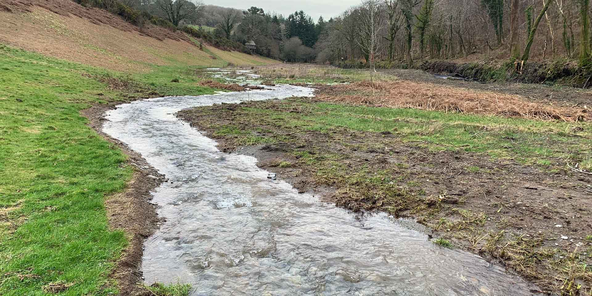 Diverted stream in a meadow