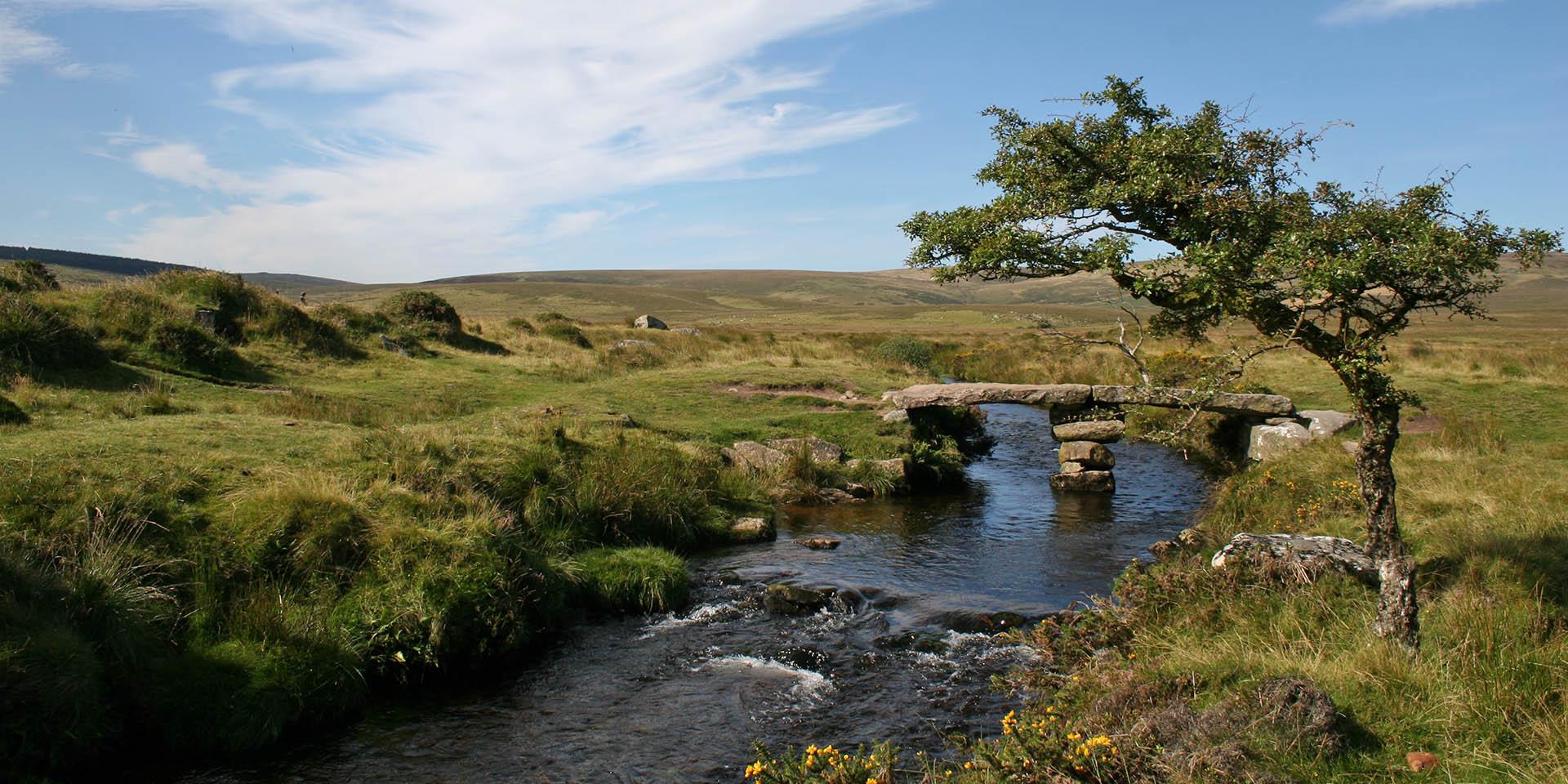 River Teign and clapper bridge on moor