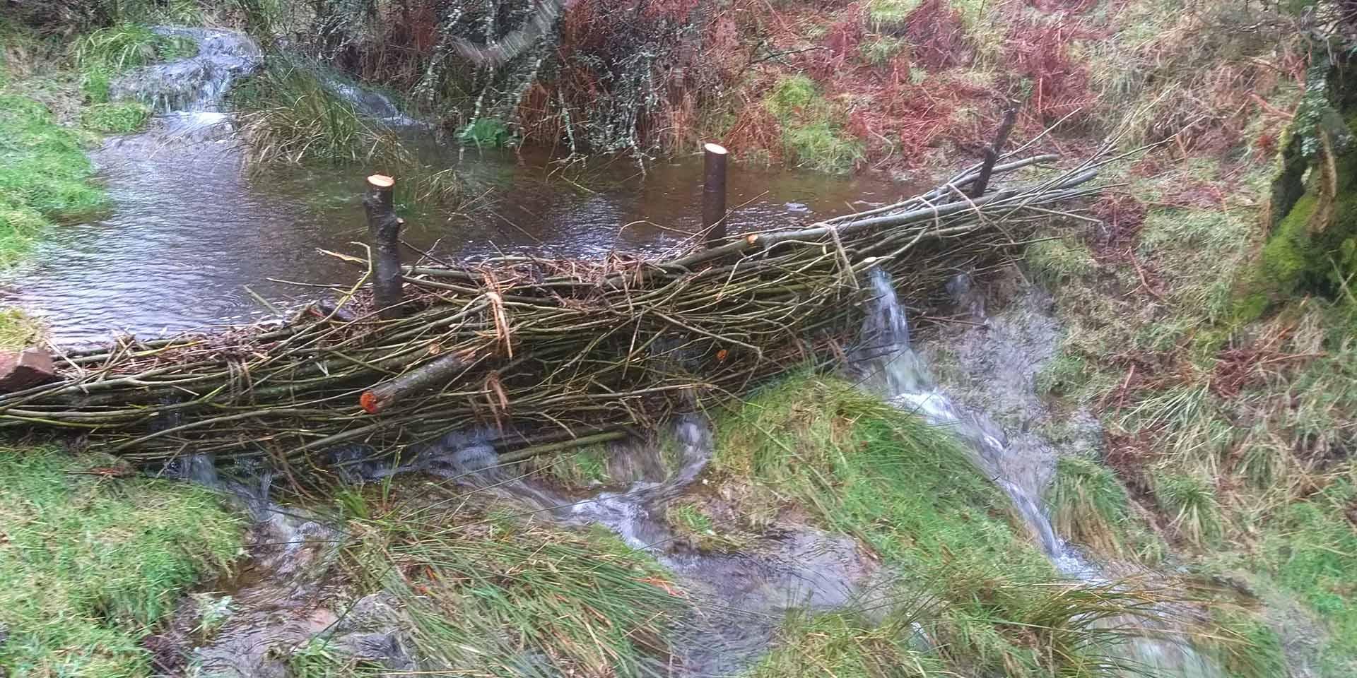 Willow faggot dam holding back runoff water