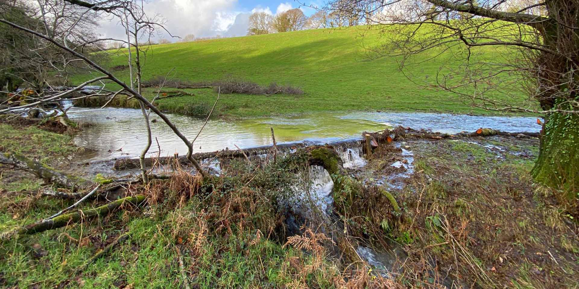 Woody debris dam encouraging water to reconnect with floodplain